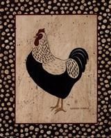 Whiteback Chicken Fine Art Print