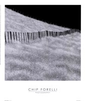 "Fence And Field by Chip Forelli - 14"" x 16"""