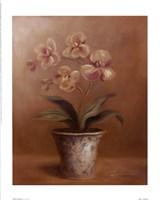 Olivia's Flowers I Fine Art Print