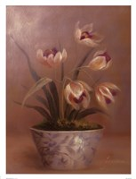 Olivia's Flowers III Fine Art Print
