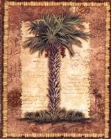 Classic Palm II Fine Art Print