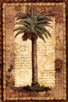 "Classic Palm I by Kathleen Denis - 24"" x 36"""