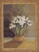 Symphony In White II Fine Art Print