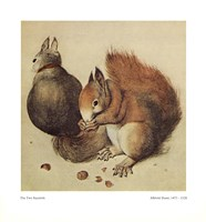 Squirrels, c.1512 Fine Art Print