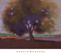Twilight Oak IV Fine Art Print