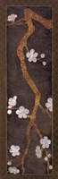 Cherry Blossom Branch I Fine Art Print
