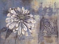 Inspired Blossom I Fine Art Print