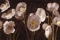 "36"" x 24"" Poppies Art"