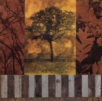 Nature Series I Fine Art Print