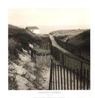 "Dune Fence by Christine Triebert - 24"" x 24"""
