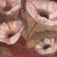 Amapola Blanca III Fine Art Print