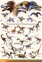 Feathered Dinosaurs II Fine Art Print