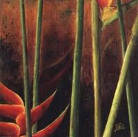 Heliconias En Naranja I Fine Art Print