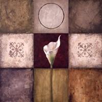 "Flourish I by Michael Marcon - 24"" x 24"""