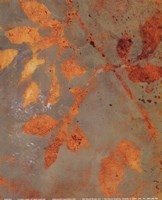 "Water Garden II by Lanie Loreth - 8"" x 10"""