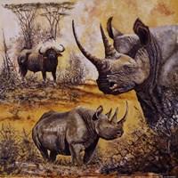 "Safari I by Gary Blackwell - 12"" x 12"""