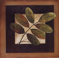 """Leaves Over Brown II by Patricia Pinto - 12"""" x 12"""""""