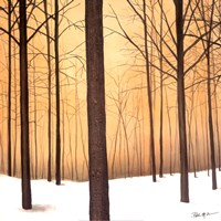 Winter Warmth Fine Art Print