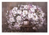 "Bouquet of Petunias by Victor Santos - 38"" x 28"""
