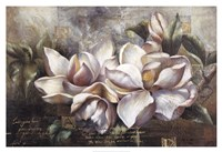 """Dawning Magnolias by Fangyu Meng - 38"""" x 26"""", FulcrumGallery.com brand"""