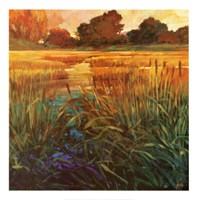 Golden Creek Fine Art Print
