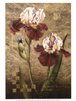"Grand Irises by Fangyu Meng - 12"" x 16"""