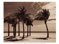"Key Biscayne I by Dennis Kelly - 16"" x 12"""