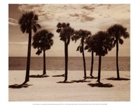 "Key Biscayne II by Dennis Kelly - 16"" x 12"""