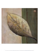 Leaf Impression - Olive Fine Art Print