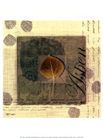 "Aspen by Tandi Venter - 12"" x 16"""