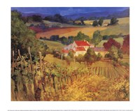 Vineyard Hill Framed Print
