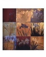 "Iris Nine Patch II by Don Li-Leger - 10"" x 10"""