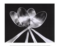 Spoons Framed Print