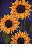 "Sunflowers by Will Rafuse - 18"" x 27"""