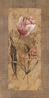"Antique Tulip by Stefania Carlini - 12"" x 24"""