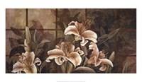 Lily Impression Fine Art Print