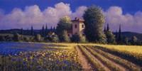 """Summer Fields II by David Short - 24"""" x 12"""""""