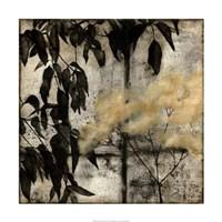 "Nature's Breath I by Jennifer Goldberger - 24"" x 24"""