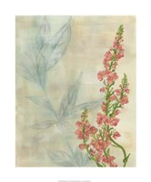 """Spring Harvest II by Chariklia Zarris - 20"""" x 24"""""""