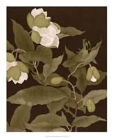 Asian Brocade I Framed Print