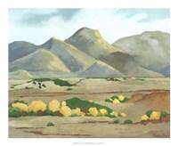 """Western Vista V by Chariklia Zarris - 22"""" x 18"""""""