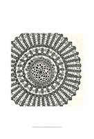 "Mini Abstract Rosette II by Chariklia Zarris - 13"" x 19"""