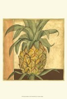 Golden Pineapple II Framed Print