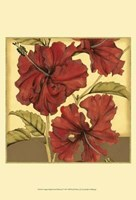 Cropped Sophisticated Hibiscus I Fine Art Print