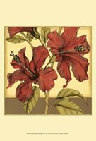 Cropped Sophisticated Hibiscus II Fine Art Print