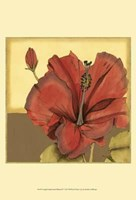 """Cropped Sophisticated Hibiscus IV by Jennifer Goldberger - 13"""" x 19"""""""