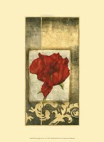"Mini Poppy Poetry IV by Jennifer Goldberger - 10"" x 13"""