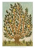 Tree Of Life I Framed Print