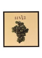 Italian Fruit IV Framed Print