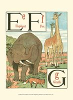 Noah's Alphabet II Framed Print
